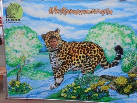 Возвращение леопарда